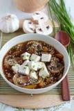 与豆腐和蘑菇的素食汤 免版税库存图片