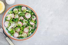 与豌豆射击和萝卜的新鲜的夏天茴香沙拉 库存图片