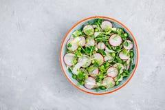 与豌豆射击和萝卜的新鲜的夏天茴香沙拉 免版税库存图片