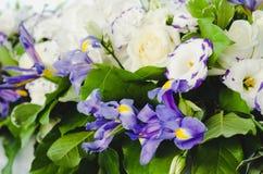 与豪华的叶子的美丽的蓝色虹膜花,白色八仙花属,精美奶油色玫瑰 夏天婚礼概念背景 库存照片
