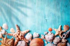 与贝壳和海星的夏时概念在蓝色木板 海滩的基于 与拷贝空间的背景 免版税库存照片