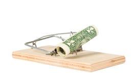 与货币的一个鼠标陷井 库存图片