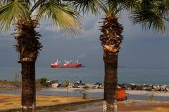 与货船和棕榈的Seaview 库存照片