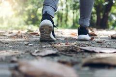 与走在公园的鞋子的脚 库存照片