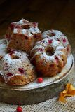 与越橘的自创燕麦松饼洒了在黑暗的背景的粉末 烘烤自创 健康的食物 免版税库存照片