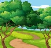 与足迹和树的公园场面 库存图片