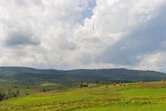 与路、多云天空和小屋的夏日风景 乌克兰,喀尔巴阡山脉 库存图片