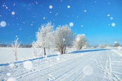 与路、森林和蓝天的冬天农村风景 库存照片