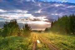 与路、草甸、森林和雾的夏天风景 库存照片