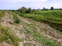 与路和岩石的生产地区 库存照片