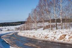 与路和桦树的冬天农村风景 库存图片
