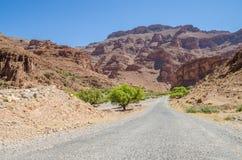 与路导致天际的,摩洛哥,北非的美好的离开的山风景 免版税库存照片