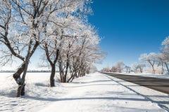 与路的冬天横向 免版税库存图片