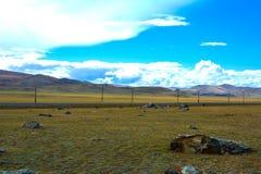 与路的明亮的干草原风景 库存照片