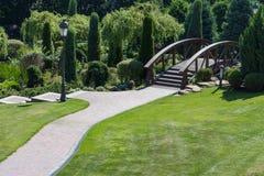 与路的美丽的绿化林荫道和在树中的木桥 有空的路的春天和夏天公园 庭院装饰 库存照片