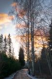 与路的美好的冬天风景向日落 肮脏的坏路 免版税图库摄影