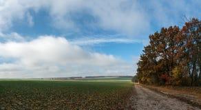 与路的风景在领域 免版税库存照片