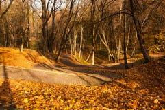 与路面的车道在秋天公园 库存图片