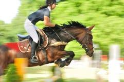 与跳跃障碍的女性骑师的马 免版税库存照片