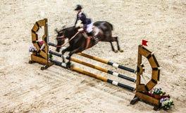 与跳过障碍的车手的黑马 18 2008年竞争杯子骑马者他jokey 7月上涨kyiv开放小马骑马体育运动 免版税库存图片