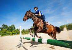 与跳过障碍的骑师女孩的海湾马 免版税图库摄影