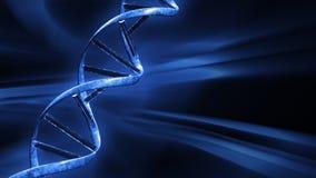 与转动脱氧核糖核酸串,无缝的圈,储蓄英尺长度的蓝色FX背景 库存例证