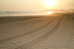 与轮胎跟踪的海滩日落 免版税库存照片