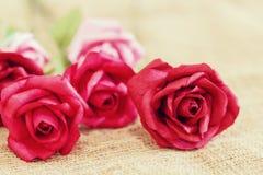 与软和被弄脏的焦点的纸玫瑰 库存照片