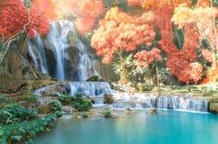 与软的焦点的美丽的瀑布和彩虹在森林里 免版税图库摄影