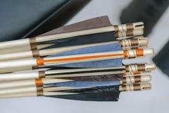 与轻量级木杆的色的箭头 免版税库存照片