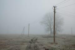与输电线土气领域背景,在地面上的霜,噪声影片作用的有雾的风景 库存图片