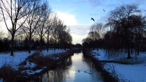 与运河、树和鸟的积雪的冬天风景 库存照片