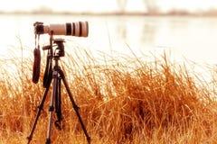 与远摄镜头的专业照相机在土地期间的一个三脚架 库存照片