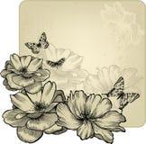 与迷人的玫瑰和的蝴蝶的葡萄酒框架 免版税库存照片