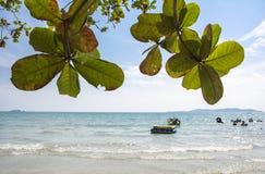 与迷离海洋的夏天沙滩 免版税库存照片