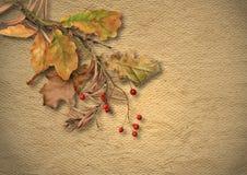 与退色的秋叶的葡萄酒织地不很细背景 库存照片