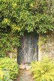与退色的老门,剥overgrwon常春藤围拢的油漆 免版税库存照片