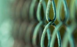 与选择聚焦的绿色老金属滤网 特写镜头,抽象图象 库存照片