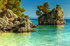 与透明的海水, Brela,达尔马提亚,克罗地亚的岩石岸 免版税库存照片