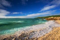 与透明的tourquise海的石海滩有杉树的在克罗地亚, Istria,欧洲 图库摄影
