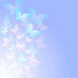与透明蝴蝶的嫩蓝色抽象背景 免版税库存图片