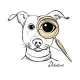 与透镜的侦探狗 库存图片