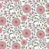 与逗人喜爱桃红色花卉无缝的样式 免版税图库摄影