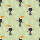 与逗人喜爱的密林鹦鹉的无缝的样式toucan在绿色 向量例证