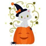 与逗人喜爱的白色小猫3的万圣夜卡片 免版税库存照片