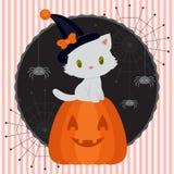 与逗人喜爱的白色小猫2的万圣夜卡片 免版税库存图片