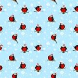 与逗人喜爱的红腹灰雀的无缝的样式 免版税库存图片