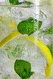 与造币厂的叶子的柠檬饮料 库存照片