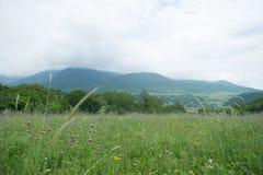 与遥远的山Ä°smayilli阿塞拜疆的风景领域 免版税库存图片