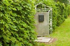 与邮箱和弗吉尼亚爬行物的被打开的小门盖了篱芭O 库存图片